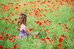 Girl in flower field Stock Photos