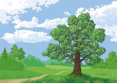 landscape, summer forest and oak tree - stock illustration