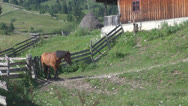 Stock Video Footage of Wooden farmhouse in the mountains.Romania.