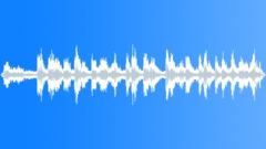 Suburban_Trainstation_German_Announcement.wav Sound Effect