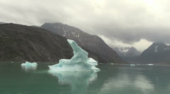 Greenland ice fjord grey sky s Stock Footage