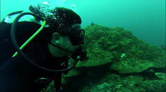 Diver exploring reef Stock Footage