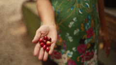 Raw coffee bean in woman hands - stock footage
