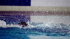 Powerful female swimmer in training doing the butterfly stroke  Stock Footage