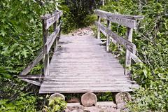 Bridge in the Woods Stock Photos