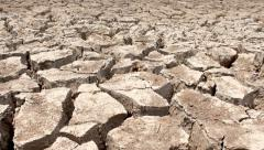 Dolly shot of cracked dry earth - stock footage