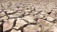 Stock Video Footage of Dolly shot of cracked dry earth