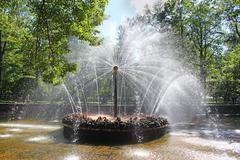Fountain in Peterhof sun Stock Photos