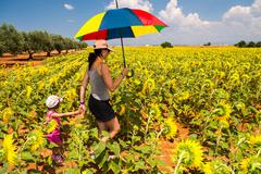 beautiful woman with colorful umbrella on a sunflowers field - stock photo
