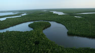 Flying Over Everglades Rivers - stock footage