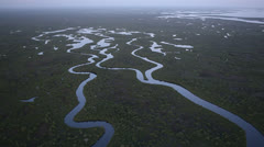 Slowly Flying Over Vast Everglades - stock footage