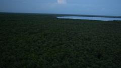 Flying Over Vast Everglades At Dusk Stock Footage