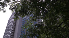 Tree Branches In Front Of High Rise Building In Boston Massachusetts Stock Footage