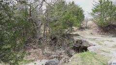 Kansas Alcove Spring c1 Stock Footage