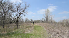 Kansas Alcove Spring landscape c1 Stock Footage