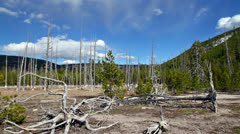 Forest and mountains panorama, time lapse Stock Footage