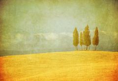 Vintage tuscan landscape Stock Illustration
