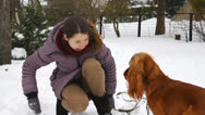 Stock Video Footage of The English Cocker Spaniel dog catching girl hand, playing in winter