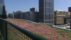 View from a green roof at The Manhattan Hotel Rotterdam + tilt up. Stock Footage