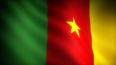 Flag of Cameroon - stock footage
