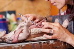 woman using scalpel on statue in workshop - stock photo