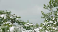 Winter fun. Slow motion Stock Footage