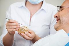 female dentist explaining artificial teeth - stock photo