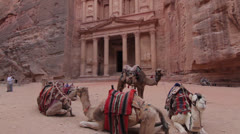 Jordan: Petra with Camels Stock Footage