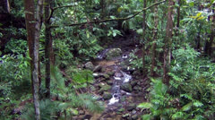 Waterfalls in Daintree Forest Stock Footage