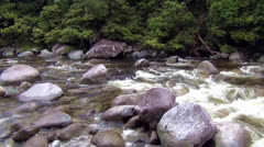 Mossman gorge Stock Footage