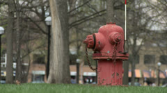 Hydrant on grass Stock Footage