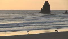 Oregon Cannon Beach off shore rock Stock Footage