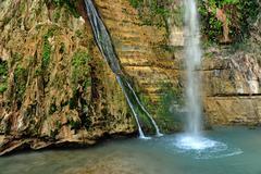 Travel photos of israel - ein gedi spring Stock Photos