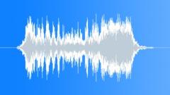 Lion roar 037 Sound Effect
