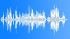Lion roar 046 Sound Effect