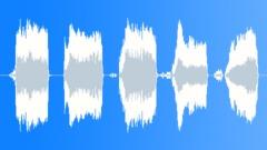 rat scream 002 - sound effect