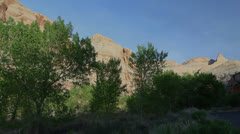 Utah Capitol Reef National Park rocks and trees c Stock Footage