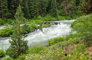 Wild Deschutes River Stock Photos