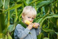 boy eating corn on the cob - stock photo