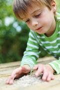 Pikkupoika pelaaminen katsot auringonkukansiemeniä Kuvituskuvat