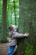 Little boy embracing big tree in the forest Stock Photos