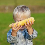 Young boy showing corn on the cob Stock Photos