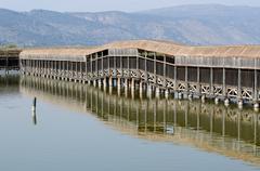 israel luonto ja villieläimet - järvi hula - stock photo