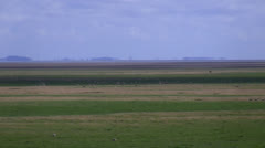 Flat landscape zoom out Stock Footage