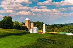Corn fields and silos on a farm in southern york county, pennsylvania. Stock Photos