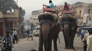 Stock Video Footage of MARKET, JAIPUR, INDIA - JANUARY  01, 2013:  Elephant walking on the street.