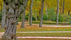 Brussels Park Stock Footage