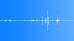 Break a thin twig, close, splinter - sound effect