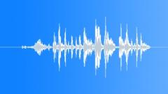Stock Sound Effects of bird chirp 067