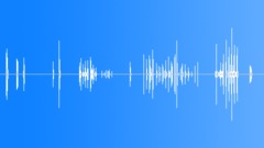 Rats 002 Sound Effect